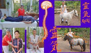 Geistheilerausbildung Stufe 1 @ Körper-Geist-Seele-Zentrum